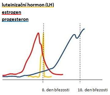 vlny jednotlivých hormonů